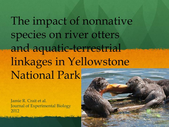 The impact of nonnative species on river otters and aquatic-terrestrial linkages in Yellowstone National Park