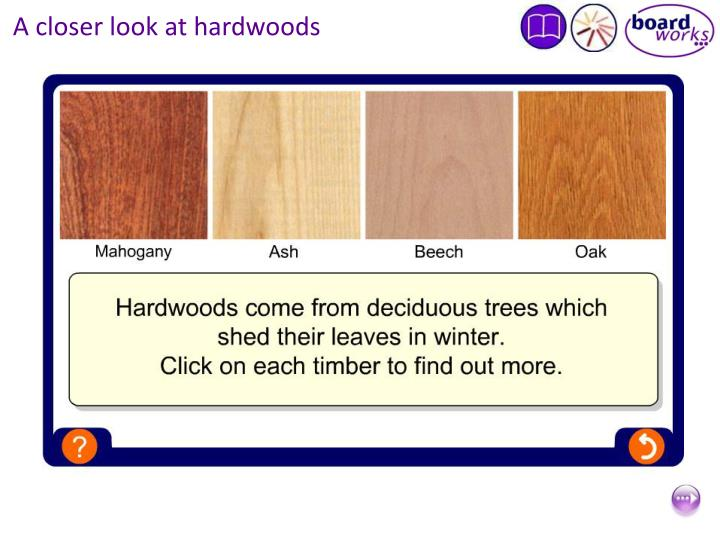 A closer look at hardwoods