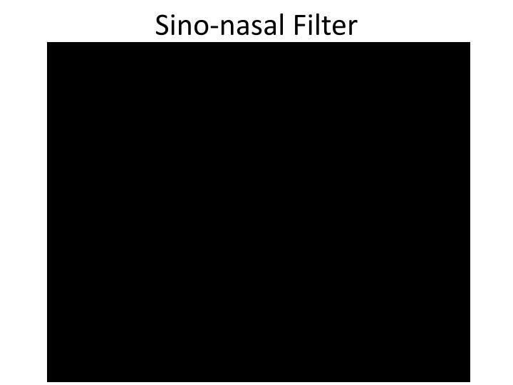 Sino-nasal Filter