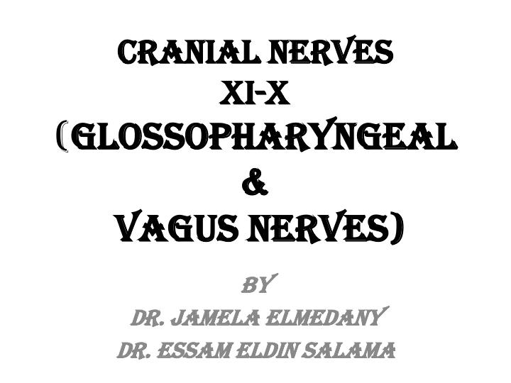 Cranial nerves xi x glossopharyngeal vagus nerves