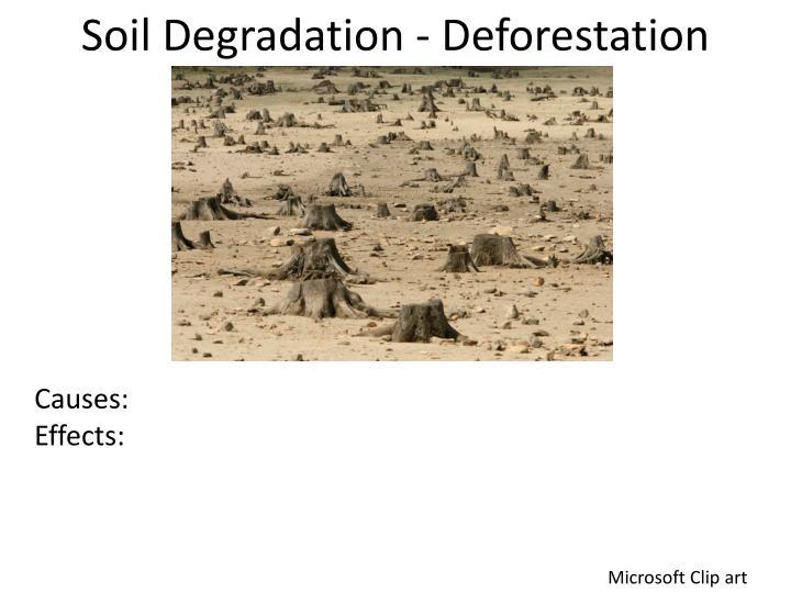 Soil Degradation - Deforestation