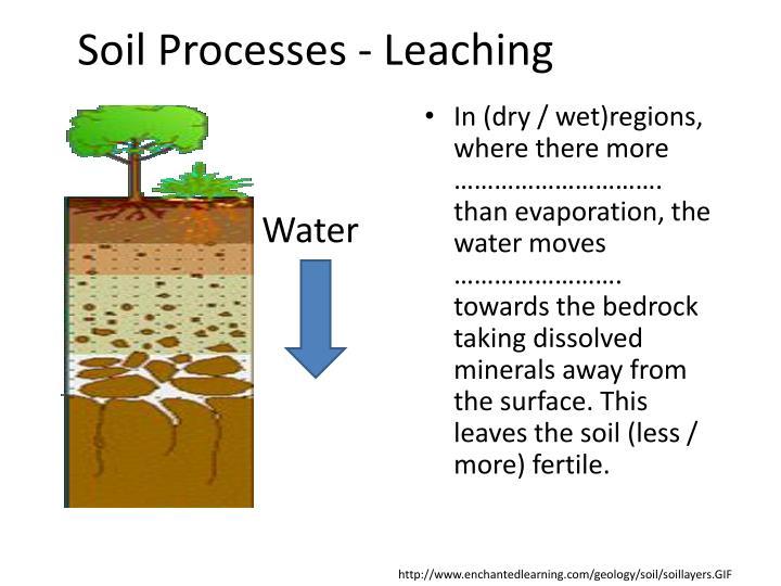 Soil Processes - Leaching