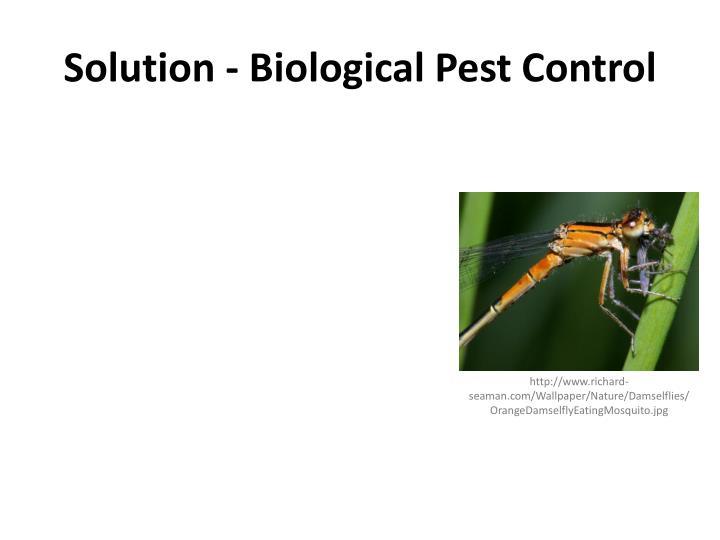 Solution - Biological Pest Control