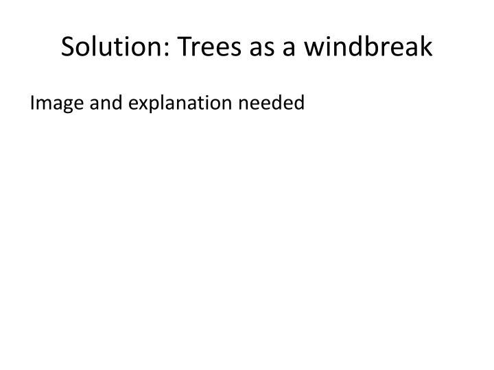 Solution: Trees as a windbreak