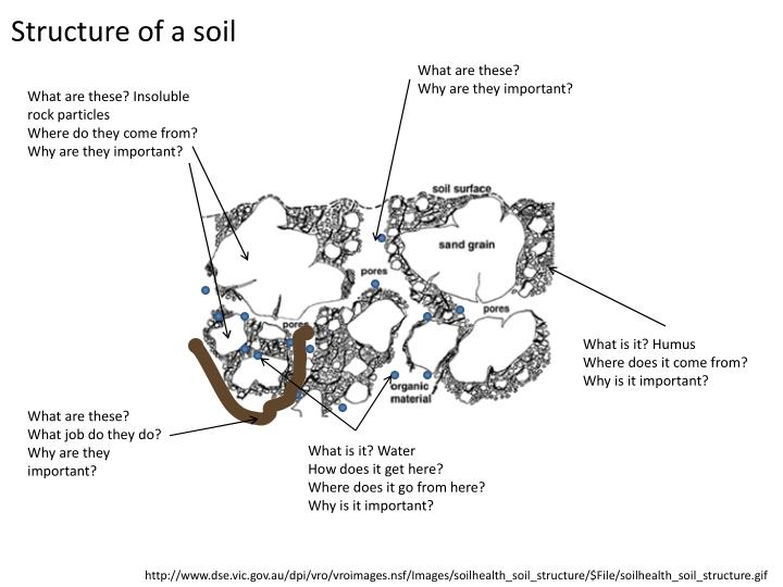 Structure of a soil