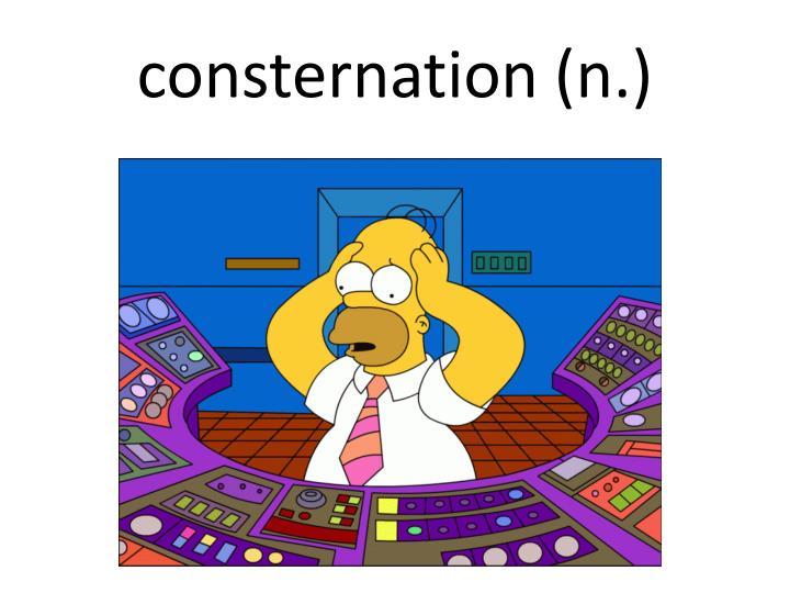 consternation (n.)