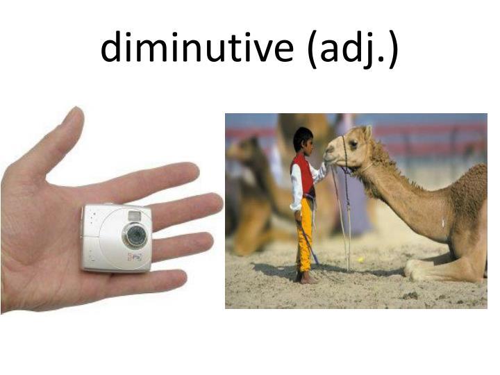 diminutive (adj.)