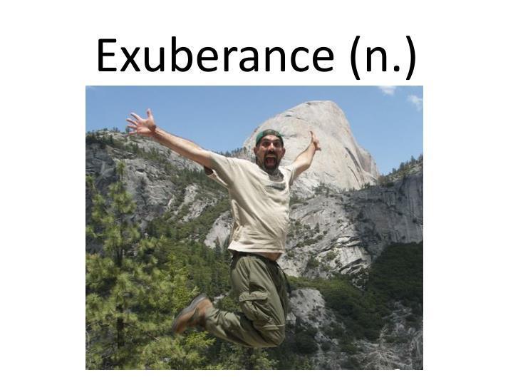 Exuberance (n.)