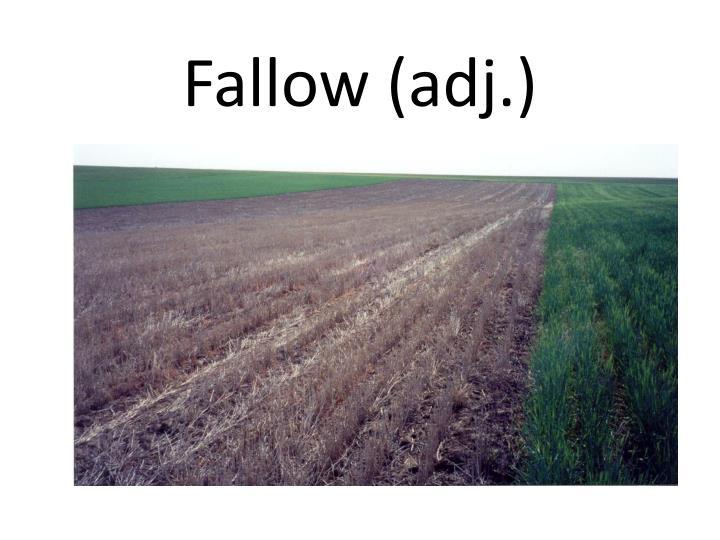 Fallow (adj.)