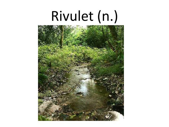 Rivulet (n.)