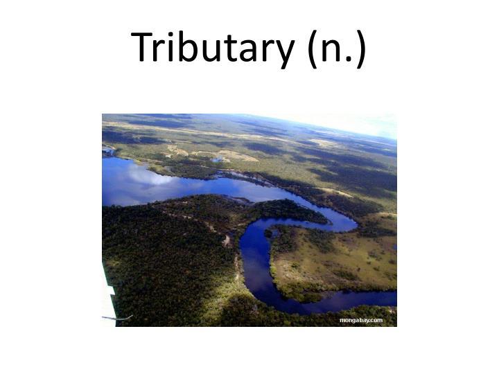 Tributary (n.)