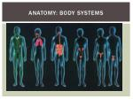 anatomy body systems