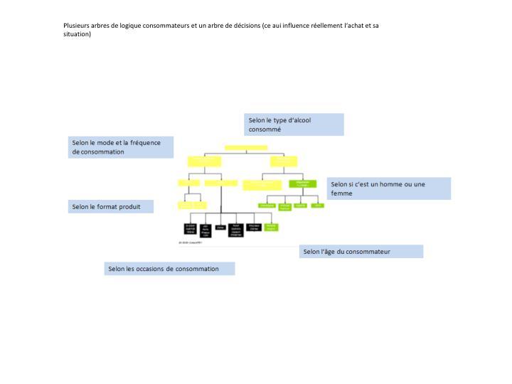 Plusieurs arbres de logique consommateurs et un arbre de dcisions (ce aui influence rellement lachat et sa situation)