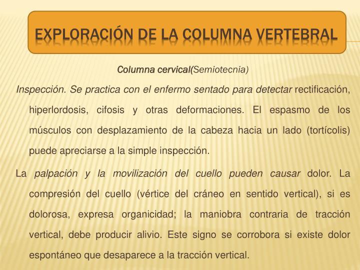 Columna cervical(