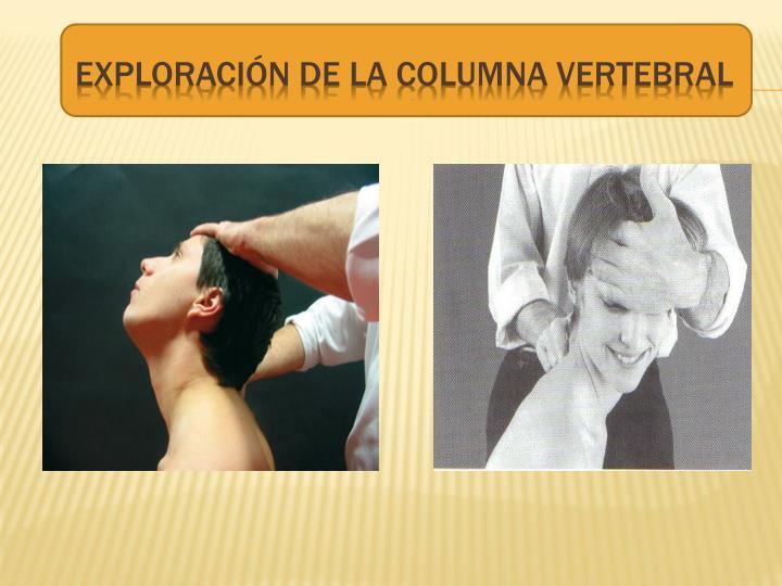 Exploración de la columna vertebral