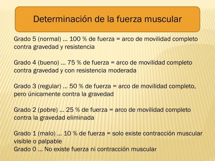 Determinación de la fuerza muscular