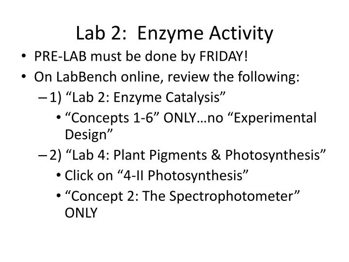Lab 2:  Enzyme Activity