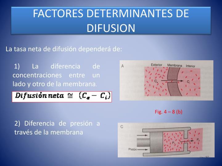 FACTORES DETERMINANTES DE DIFUSION