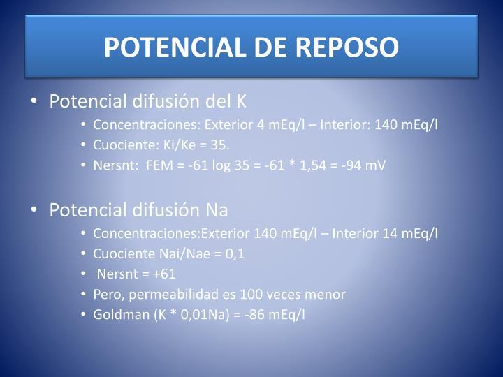 POTENCIAL DE REPOSO