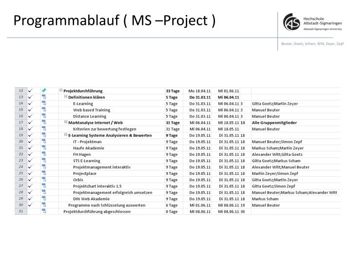 Programmablauf ( MS –Project )