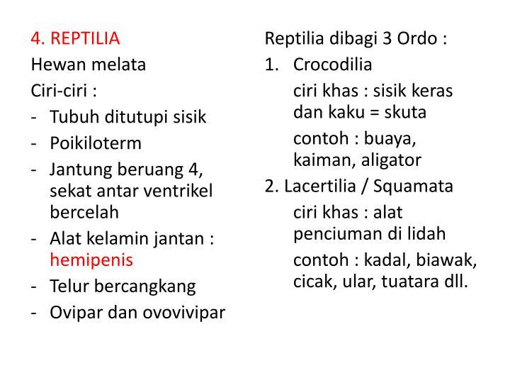 4. REPTILIA