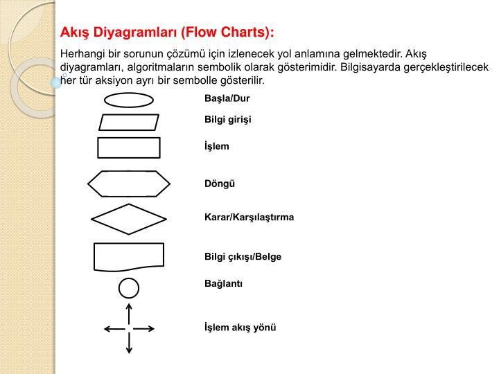 Akış Diyagramları (