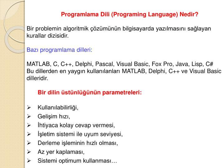 Programlama Dili (