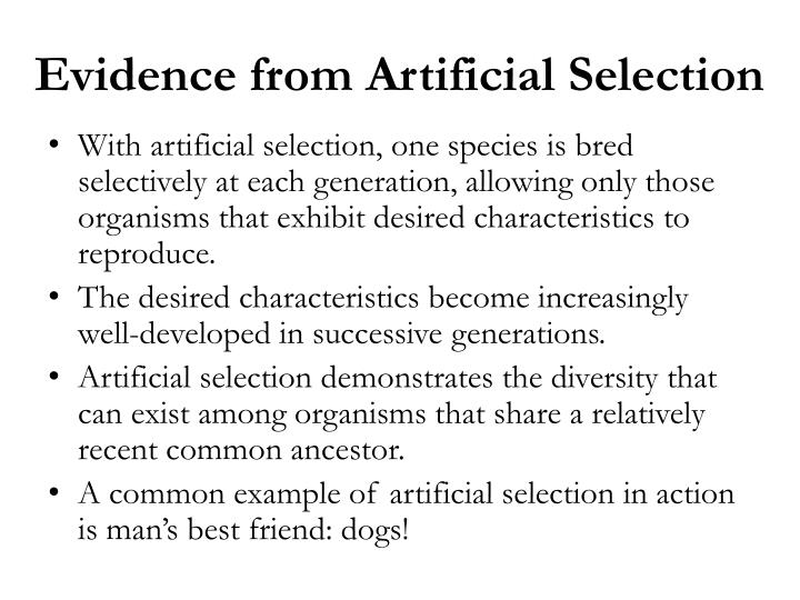 Evidence from Artificial Selection