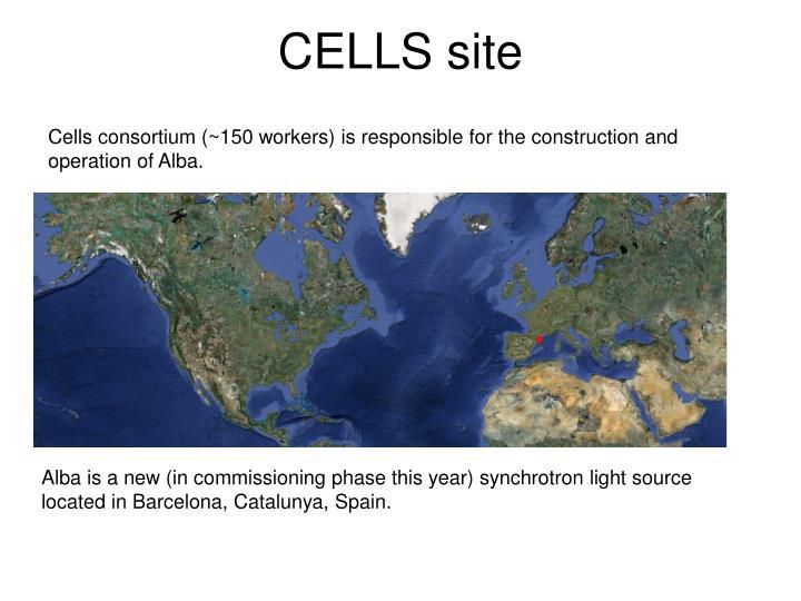 CELLS site