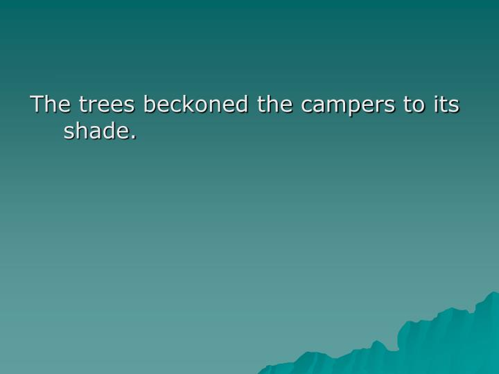 The trees beckoned the campers to its shade.