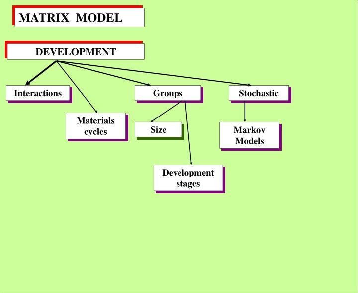 MATRIX  MODEL
