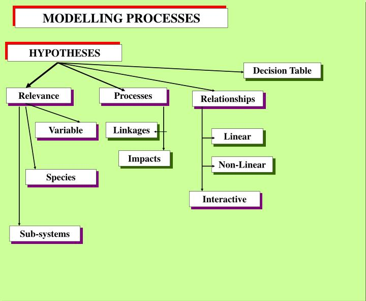 MODELLING PROCESSES