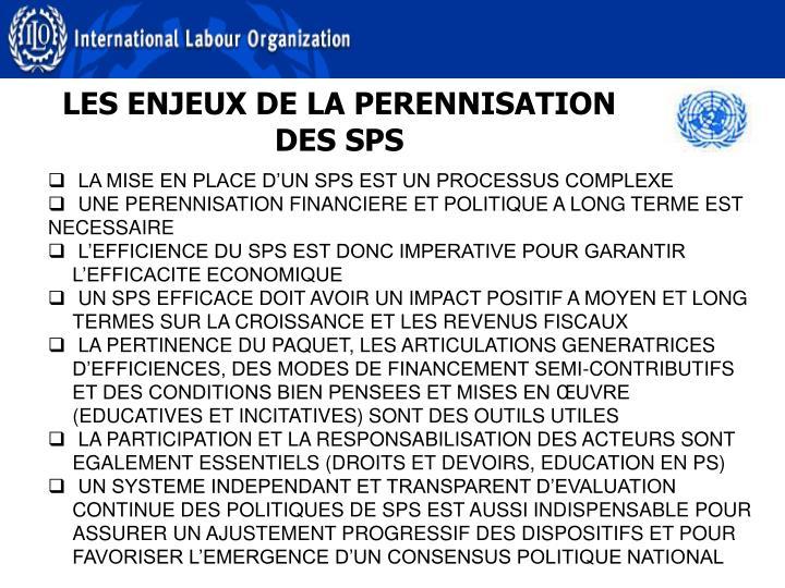 LES ENJEUX DE LA PERENNISATION DES SPS