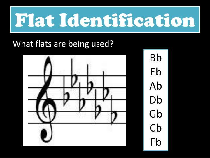 Flat Identification