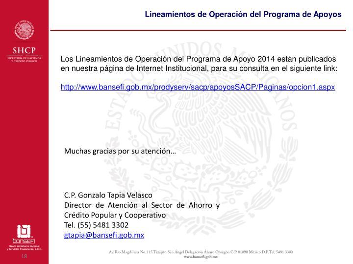 Lineamientos de Operación del Programa de Apoyos