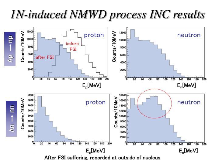 1N-induced NMWD process INC results