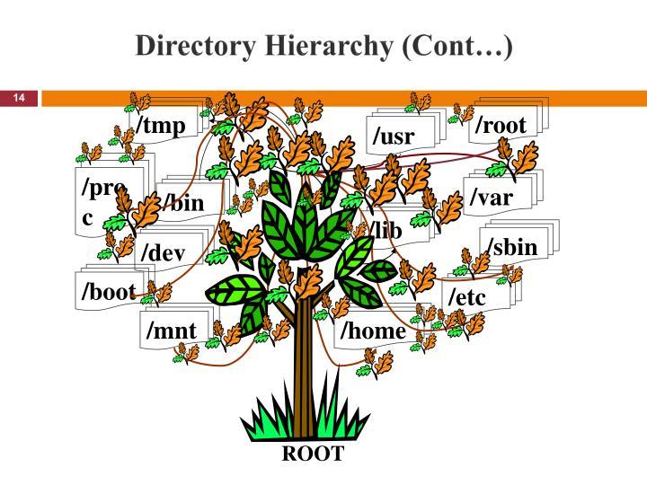 Directory Hierarchy (