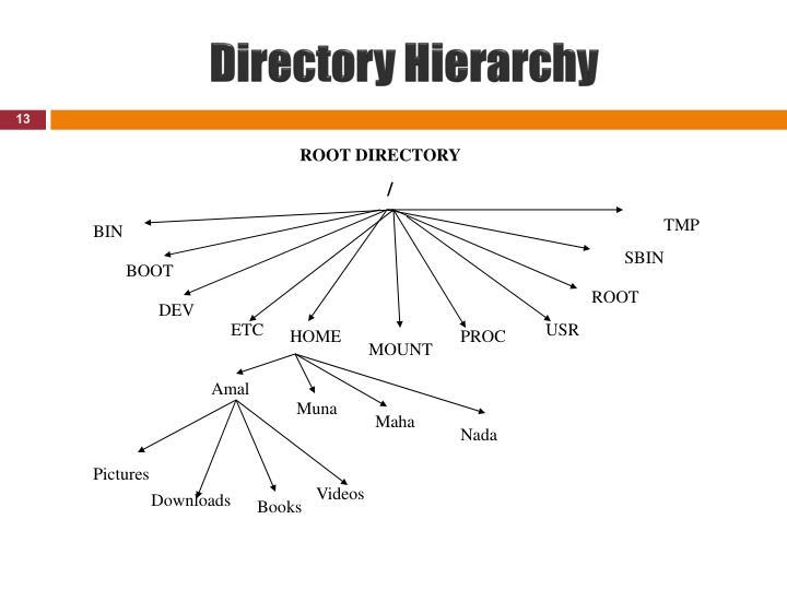 Directory Hierarchy