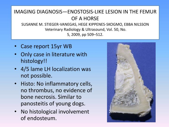 IMAGING DIAGNOSIS—ENOSTOSIS-LIKE LESION IN THE FEMUR