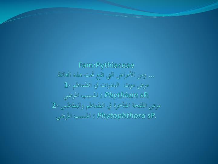 Fam:Pythiaceae