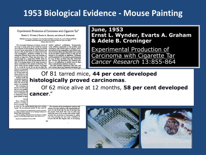 1953 Biological Evidence - Mouse Painting