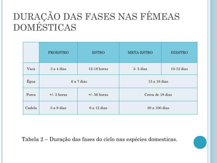 DURAÇÃO DAS FASES NAS FÊMEAS DOMÉSTICAS
