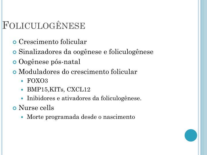 Foliculogênese