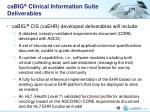 cabig clinical information suite deliverables