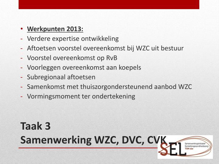 Werkpunten 2013: