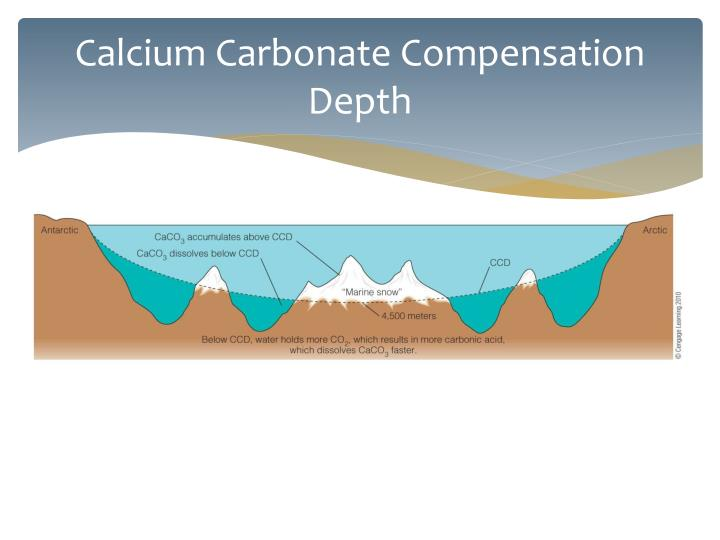Calcium Carbonate Compensation Depth