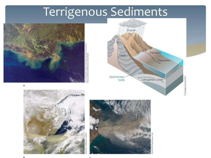 Terrigenous Sediments