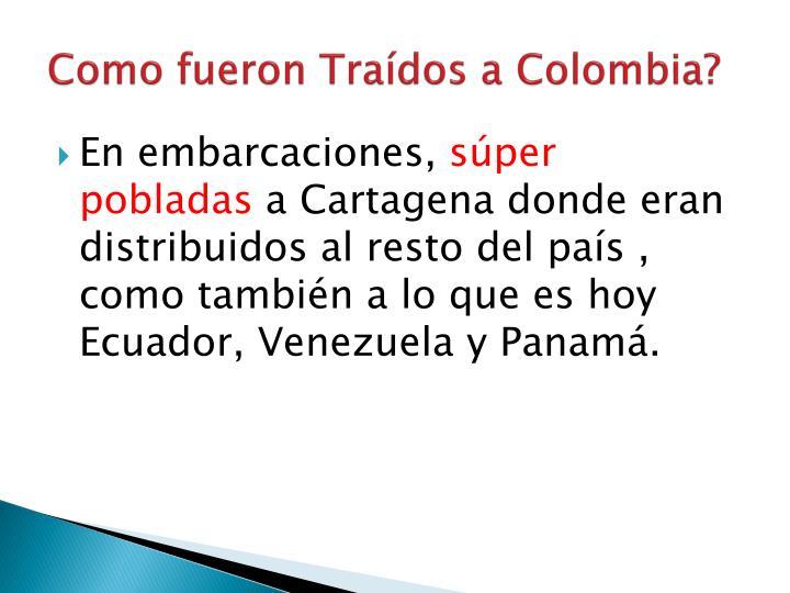 Como fueron Traídos a Colombia?