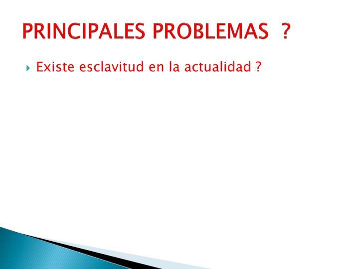 PRINCIPALES PROBLEMAS  ?