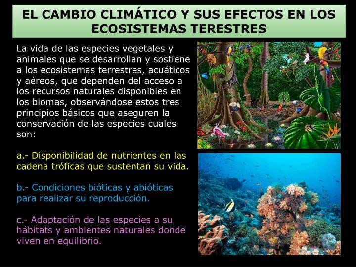 EL CAMBIO CLIMÁTICO Y SUS EFECTOS EN LOS ECOSISTEMAS TERESTRES